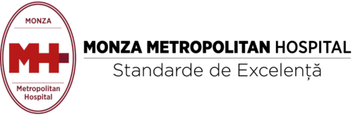 Monza - Transparent - 500x163
